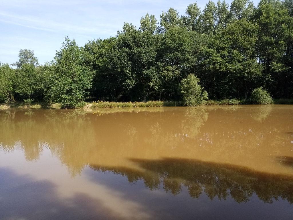 A Vendre Terrain de loisirs Axe Rennes/Saint Brieuc