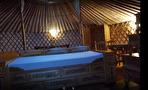 A VENDRE région SAINT MALO/DINAN/DINARD : hébergements haut de gamme, spa, gîtes, longère